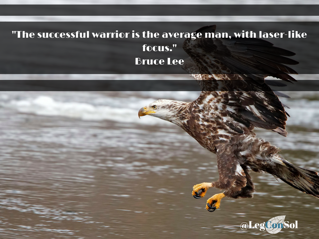 The successful warrior is the average man, with laser-like focus.~ Bruce Lee