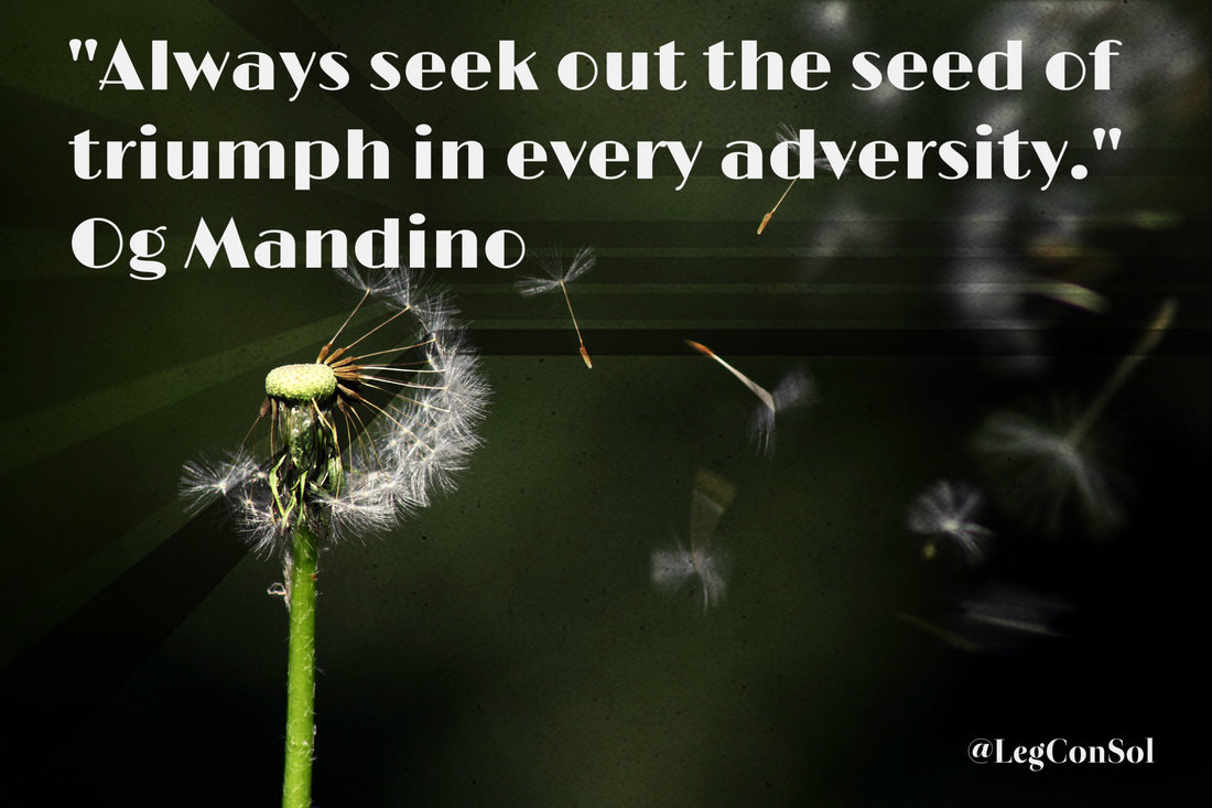 Always seek out the seed of triumph in every adversity.~ Og Mandino