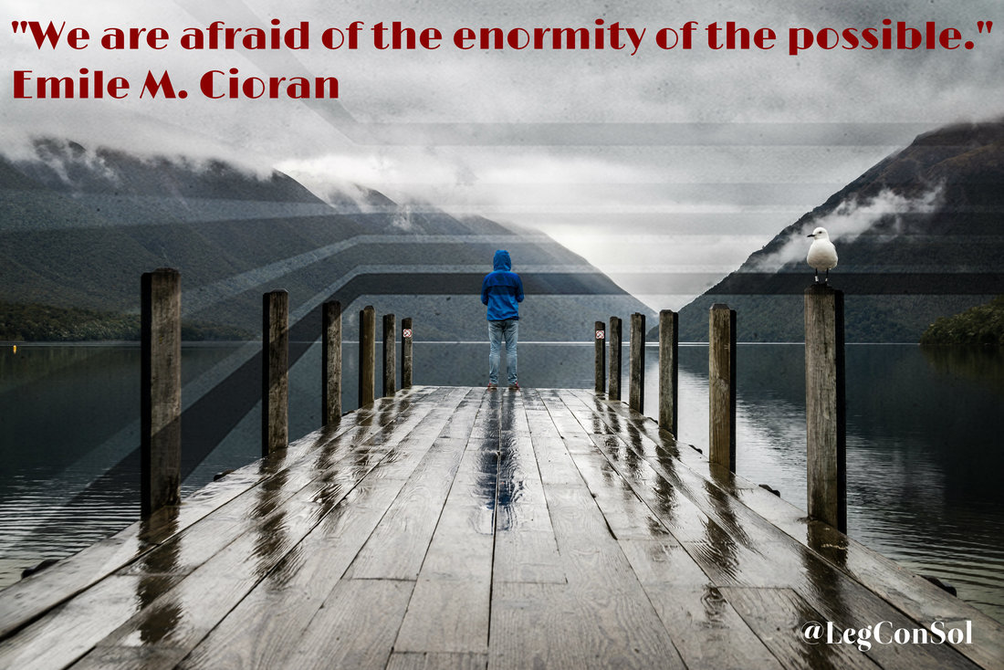 We are afraid of the enormity of the possible.~ Emile M. Cioran