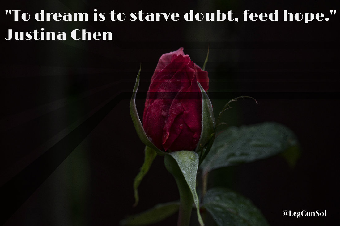 To dream is to starve doubt, feed hope.~ Justina Chen