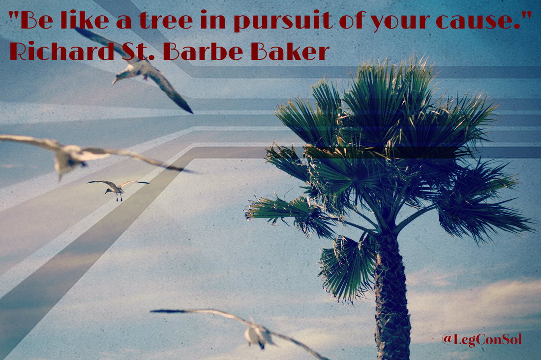 Be like a tree in pursuit of your cause.~ Richard St. Barbe Baker