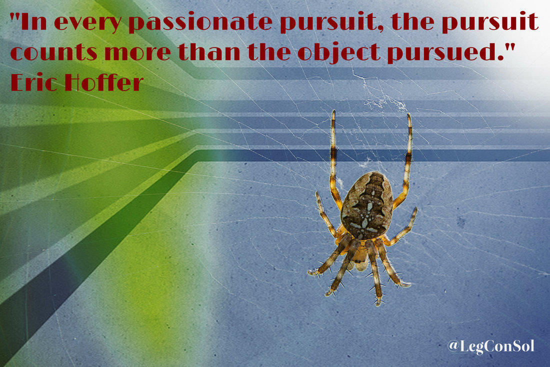 In every passionate pursuit, the pursuit counts more than the object pursued.~ Eric Hoffer