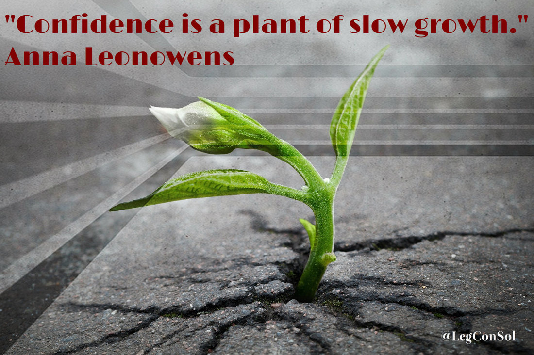 Confidence is a plant of slow growth.~ Anna Leonowens